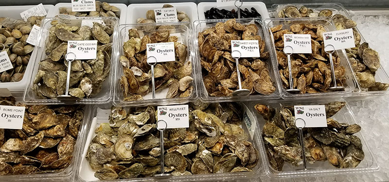 various types of oysters at Mr. Bill's